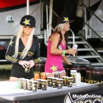 Samples of Rockstar are always favourites at the Nationals.